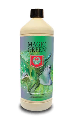 House & Garden - Magic Green